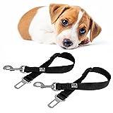 EVERANIMALS 2er-Set Hundegurt für´s Auto, Sicherheitsleine, Hundeleine, 40-60cm, Für alle Geschirre