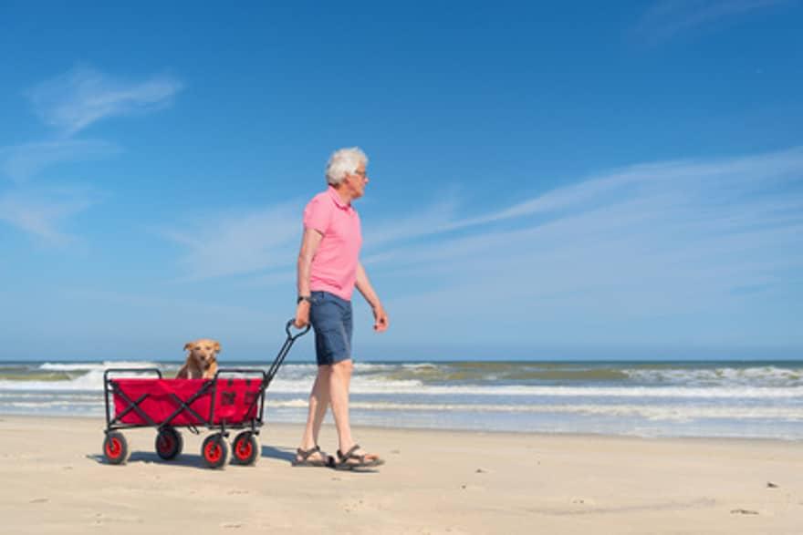 Hundebuggy – Mobilität im Urlaub für alte, kranke und sehr junge Hunde